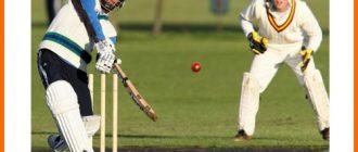 сколько подач включает овер в крикете